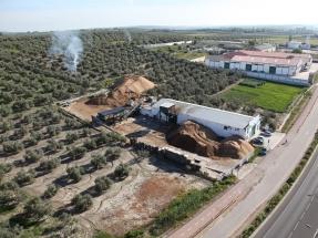 Producción de electricidad y hueso de aceituna, claves del empleo bioenergético en Andalucía