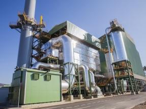 """Miteco: """"La biomasa puede estar presente en la subasta de megavatios sin tecnología asociada"""""""