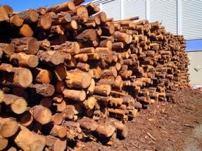 El sector forestal teme a la cascada de la biomasa; el maderero la desea