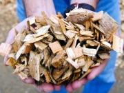 Se buscan empresas valencianas para un proyecto europeo sobre biomasa