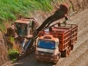 La generación por biomasa supera la de una represa gigante