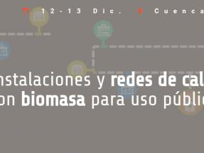 Castilla-La Mancha y Avebiom presentan un congreso sobre redes de calor públicas con biomasa