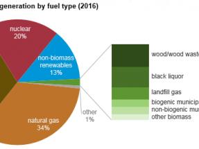 Los combustibles derivados de biomasa y residuos contribuyeron con el 2% a la generación eléctrica en 2016