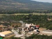 Avanza la biomasa
