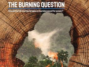 Un estudio cuestiona los 14.000 millones de euros de subvención a la biomasa en el Reino Unido