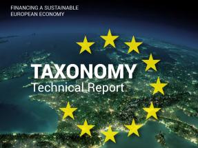 A la bioenergía europea no le gustan los primeros pasos del reglamento de finanzas sostenibles