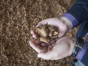Huesos de aceitunas y cáscaras de almendras para calderas de biomasa: mejor certificados