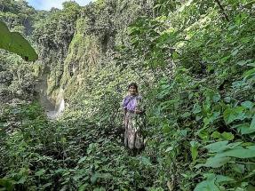 Denuncian los impactos sociales y ambientales del auge del cultivo de caña de azúcar