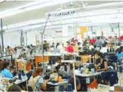 320 millones para que la biomasa energice la industria textil
