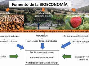 Castilla y León apoya un proyecto contra la despoblación en Soria que cuenta con la biomasa