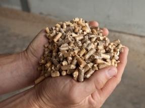 Cataluña se propone instalar 844 megavatios más de biomasa térmica hasta 2027