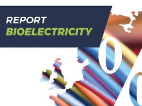 La bioelectricidad crecerá un treinta por ciento en la próxima década en la UE