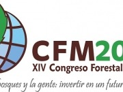 El Congreso Forestal Mundial habla de bioenergía.