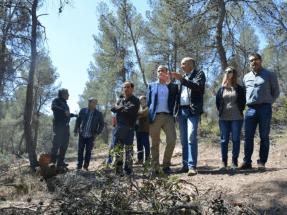 Echa a andar el plan especial para la biomasa en montes públicos de la Región de Murcia