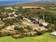 Inauguran una planta eléctrica a biomasa de 38 MW