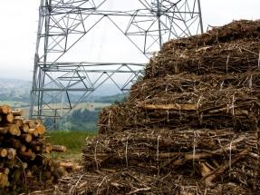 El TSJ de Aragón y el Gobierno abren la puerta a nuevas centrales de biomasa