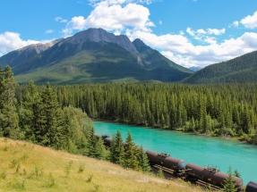 España estrecha lazos bioenergéticos con Canadá, segundo mayor exportador mundial de pélets