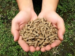 Procesan residuos de caña de azúcar para producir pellets