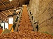 Interbiomasa suministrará biocombustibles a grandes consumidores de biomasa de toda España
