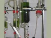 Cómo integrar la producción de microalgas en otros procesos industriales