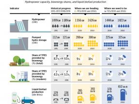 Irena otorga a la bioenergía un papel vital en la transición energética, con biocarburantes para décadas