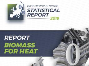 Casi el 87 por ciento del consumo de calor con renovables en Europa procede de la biomasa