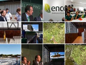 Ence logra la autorización ambiental integrada para la planta de 40 MW en Huelva
