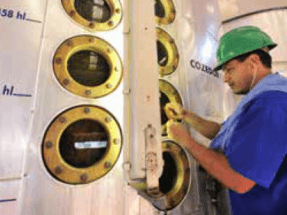 Brasil concentra casi un tercio del empleo mundial en bioenergía