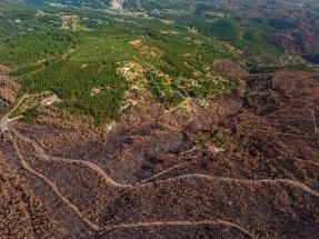 La CE permite que Portugal otorgue ayudas a nuevas plantas de producción de electricidad con biomasa