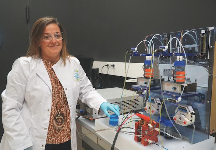Nuevo proyecto para desarrollar baterías orgánicas de flujo que faciliten el uso de renovables