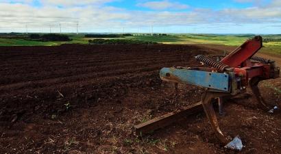 BRASIL: A discusión parlamentaria una iniciativa para cobrar royalties a la energía eólica