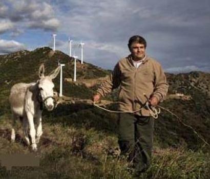 Los ecologistas vuelven a parar la eólica en Cataluña