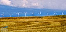 Las renovables cubrieron en España el 42,4% de la demanda eléctrica de 2013