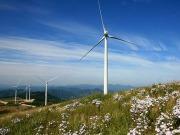 Acciona presenta un ERE en su plantilla de renovables por los recortes del Gobierno