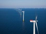 Dinamarca inaugura su mayor instalación marina