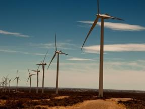 La empresa renovable Genneia coloca bonos por 150 millones de dólares con vencimiento en 2022