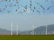 La Asociación Empresarial Eólica prepara un otoño caliente