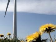 La transición energética no puede ser tranquila ni respetuosa con el statu quo