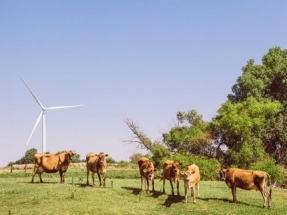 Texas: Inicia la operación comercial el parque eólico Wildcat Creek, de 180 MW, propiedad de EDPR