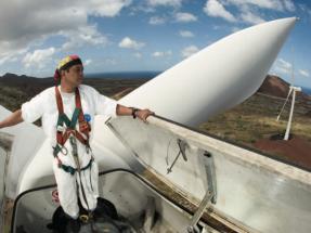 Subastas de renovables, el instrumento preferido