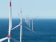 El Parlamento alemán pone freno a la expansión de las renovables