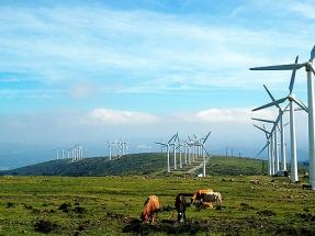 El 21% del parque eólico español se verá afectado por los recortes que implica la reforma eléctrica del Gobierno