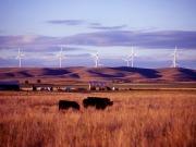 EDPR pondrá en marcha el año que viene un parque eólico de cien megavatios en Ohio
