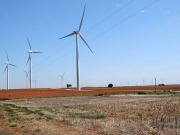 US study finds grassland birds displaced by wind turbines