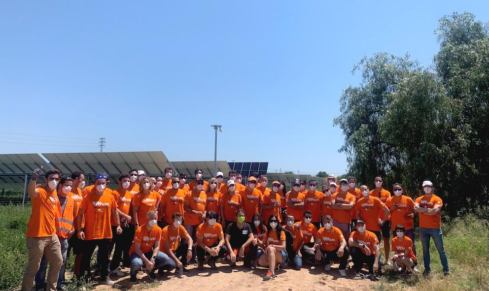 Soltec reforesta la planta solar de La Asomada, en Cartagena, con árboles autóctonos