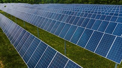 El sol es tan vital para las plantas como la energía solar lo es para el sector agrícola