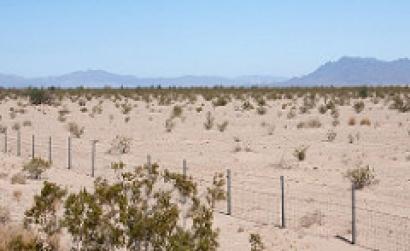 EEUU: California: Autorizan tierras públicas para Palen, un proyecto fotovoltaico de 500 MW