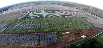 Primavera, soluciones de mantenimiento para plantas fotovoltaicas