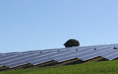 Así se reparten los proyectos adjudicados en la segunda subasta de renovables de 2017
