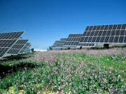 Acciona firma una instalación solar fotovoltaica de 7,2 MW